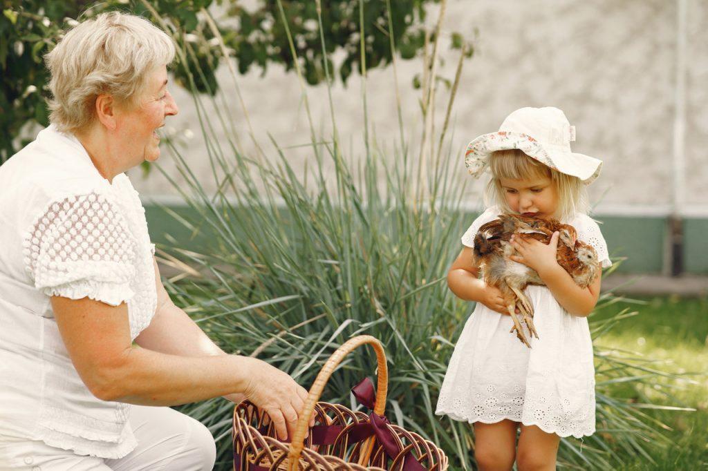 babcia z wnuczką trzymającą kurczaka